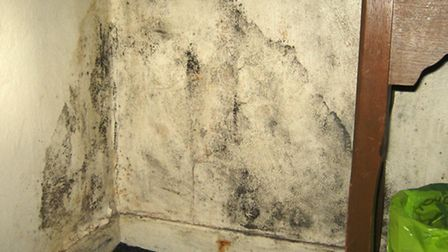 Damp and mould in this Stroud Green flat has landed the landlord in hot water