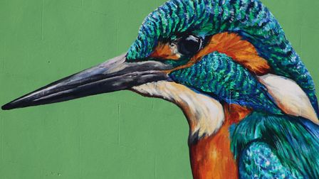 Street artist ATM has completed his Kingfisher mural near the bascule bridge. Photo: Kevin Coote