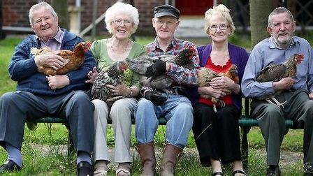 Hens will be used to combat loneliness