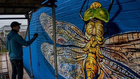 ATM putting the final touches on his latest mural in Lowestoft - a Norfolk hawker dragonfly. Photo: