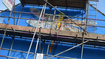 The dragonfly, which will be clear to see when scaffolding comes down next week. Photo: Matthew Nixo
