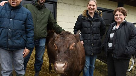 Volunteers with some of the animals at Freightliners Farm in Islington. Jisanne Gray, Danny Nicola,
