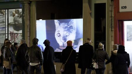 A film beams from outside Tintype, Essex Road, last year. Photo: Cameron Leadbetter