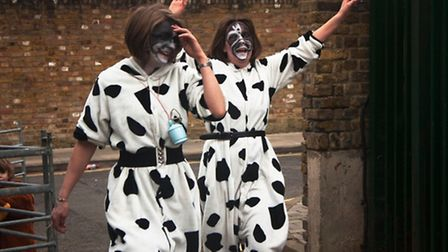Members of Team Cow reach the finish line in last year's race