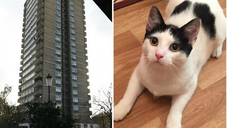Molly, right, fell from a third floor balcony in this tower block
