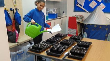 A Vittoria Primary student with the rocket seeds
