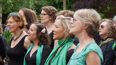 The Parklife Singers will return and perform at the Chris and Miranda Mason's 10th annual Open Garde