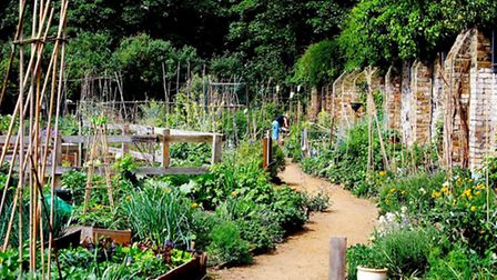 King Henry's Walk Gardens (Picture: London Parks and Gardens Trust)
