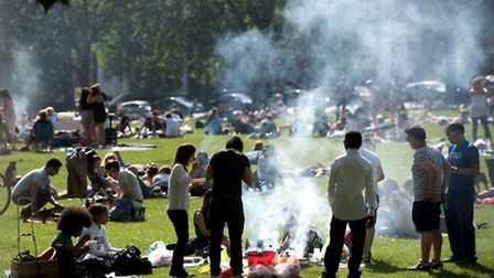 Up in smoke: Highbury Fields pictured in summer last year. Picture: Stephanie Knight