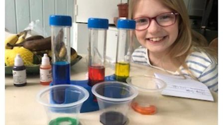 Pupils at Gunton Primary Academy in Lowestoft showcase their home learning, which was praised by sta