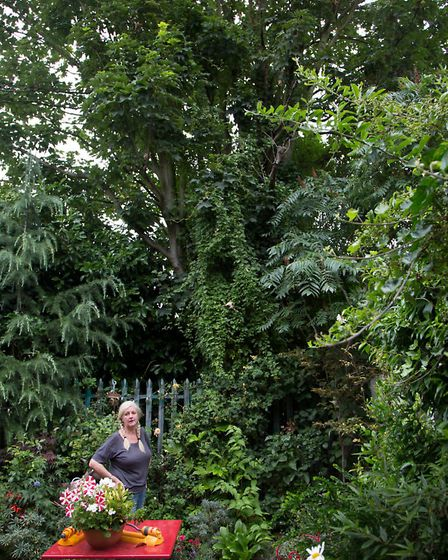 Tracy Brent, attempting to halt tree felling on her garden boundary by Network Rail as it provides h