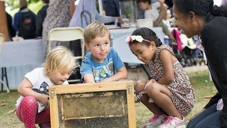 Olive and George Littler, aged three and five, with Myla Lewis aged five, learning all about bees f
