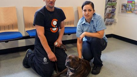 Gulbar Hussain, Lucky�s owner, with Tania Mazzoni, animal welfare officer at Mayhew Animal Home
