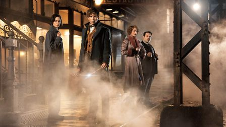 Fantastic Beasts and Where to Find Them � 2016 WARNER BROS ENTERTAINMENT INC