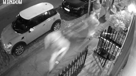RSPCA appeal after Barnsbury cat attack