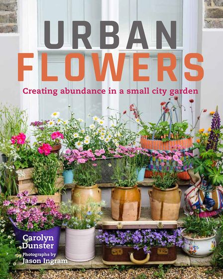 Cover of Urban Flowers