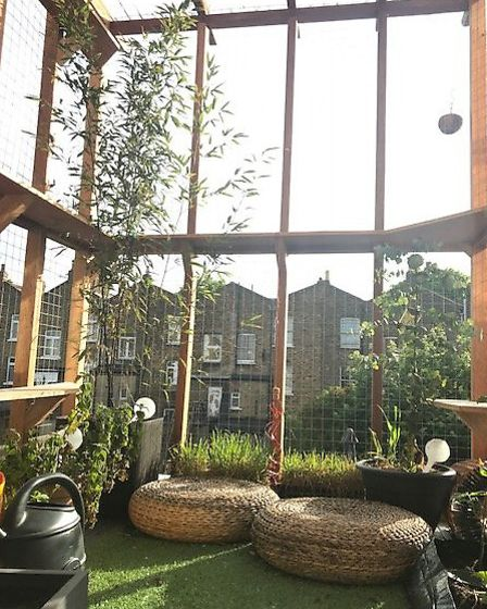 The 'catio' before it was removed. Picture: Claire Patel