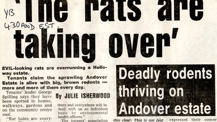 An Islington Gazette article from August 1988 about the Andover Estate, which was being overrun by ""