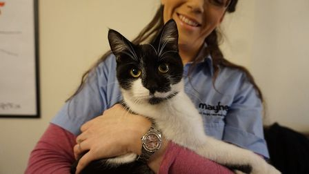 Mo, with Mayhew's welfare co-ordinator Georgina Disney, was abandoned after being bought on a boot s