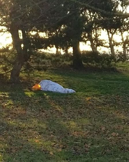 Rough sleeper on a freezing November night in Gladstone Park (Picture: Steve Roberts)
