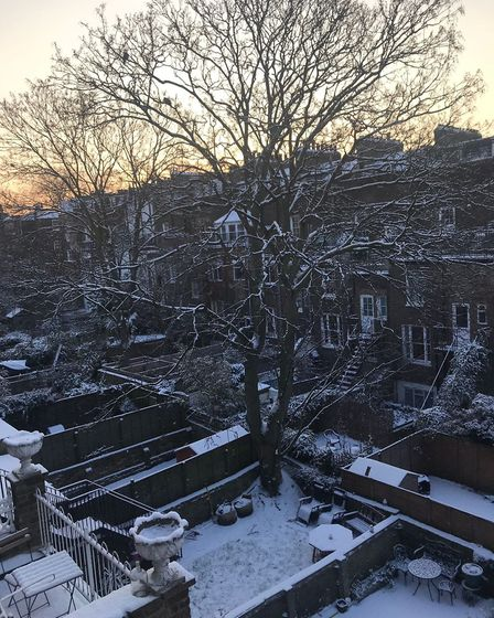 Snow in Barnsbury this morning. Picture: Carline Cheng