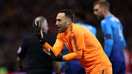 Arsenal goalkeeper David Ospina appeals to the linesman during the Emirates FA Cup, Third Round matc
