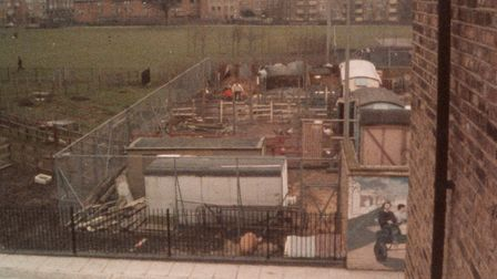 Freightlinders City Farm under construction in the late '70s. Picture: Freightlinders City Farm