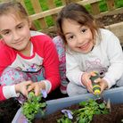 Youngsters at this year's Islington in Bloom launch on Saturday. Picture: Islington Council