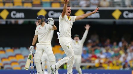 Australia's Josh Hazlewood appeals unsuccessfully for the wicket of Dawid Malan during day one of th