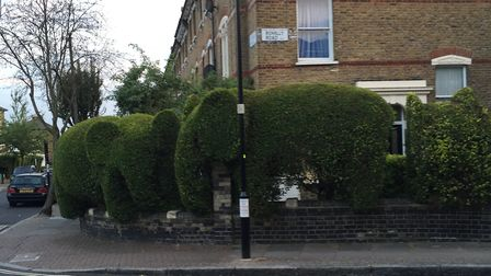 The topiary elephants next door to the boarded-up crack den. Picture: Lucas Cumiskey