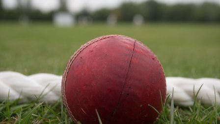 The cricket season is over halfway through now (pic: George Phillipou/TGS Photo)