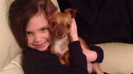 Lola the Chiuahua with one of Suzanne Day's children. Picture: Suzanne Day