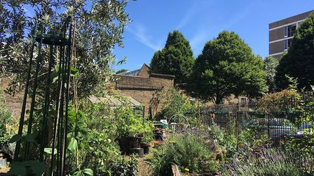 Bevin Court won the Residential Communal Garden gong. Picture: Islington Council