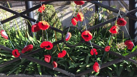 Volunteers across Islington knitted nearly 300 poppies for the Armistice Day centenary, which are no