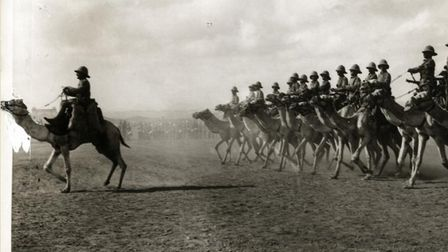 The camel regiment in action. Pic: SAAFI