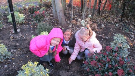 Uxendon Manor Primary pupils plant daffodil bulbs in Woodcock Park to raise awareness of polio.