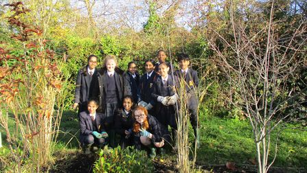St Gregory pupils plant crocuses in Woodcock Park to raise awareness of polio.
