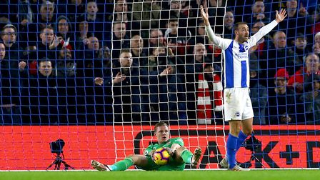 Brighton & Hove Albion's Glenn Murray (right) appeals for a goal (pic Gareth Fuller/PA)