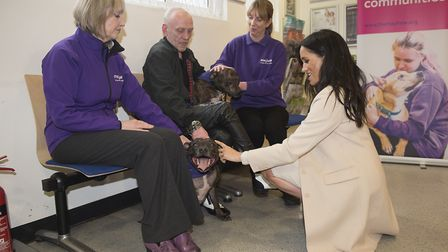 The Duchess of Sussex meets Wully Struthers and his staffies Azzy and Gallis during a visit to Mayhe