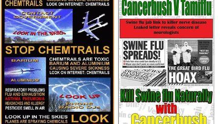 Publicity around 'chemtrails' and the swine flu drug Tamiflu on King Lion's website.