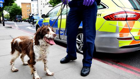 Police raid a property during a Section 23 drugs warrant on May 17, 2019. Stan the Police sniffer do