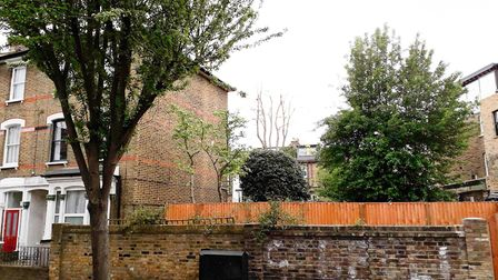 Our back garden and street trees are under threat from insurance companies repairing homes suffering