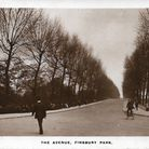 The Avenue in Finsbury Park. Picture: Hugh Hayes