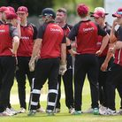 North Middlesex celebrate a wicket in the Middlesex County Premier Division (pic: George Phillipou/T