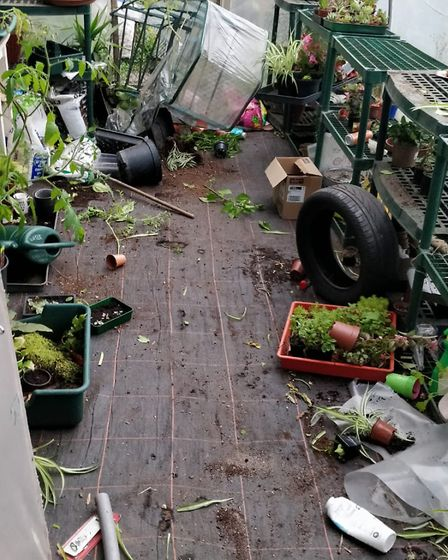 floor-of-trashed-polytunnel