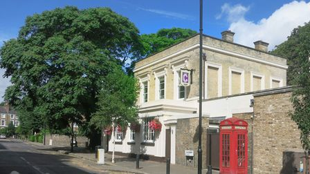 The Canonbury Tavern and one of the offending trees of heaven pictured in 2016. Picture: Des Blenkin