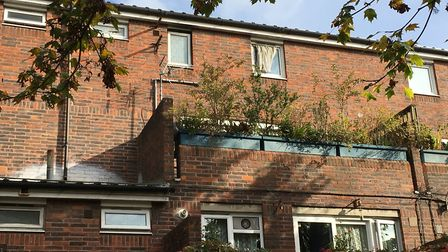 A woman died in a flat in her Mingard Walk flat on the Andover Estate. Picture: Lucas Cumiskey