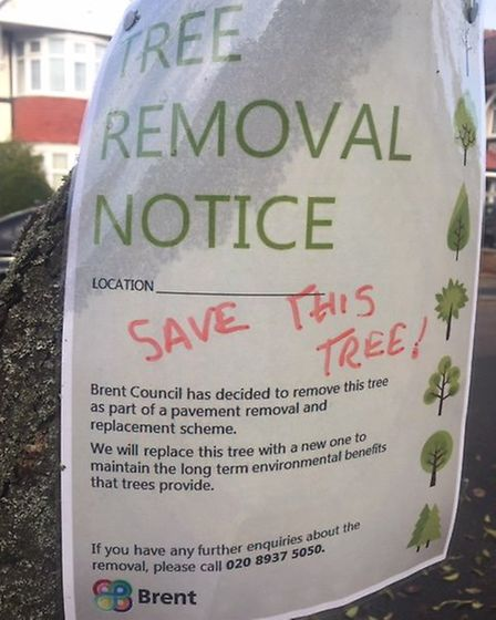 Notice that appeared on trees in the Ridgeway, Kenton. Picture: Sandra Levy