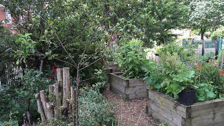 Lever Street Community Centre won best community park in last year's Islington in Bloom. Picture: Is