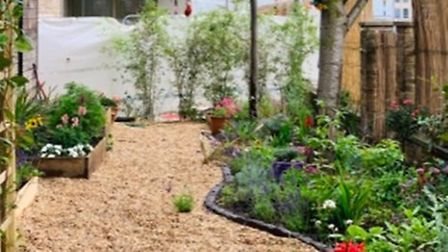 St Augustine's school garden transformsfrom dull patch into a sensory space. Picture: Aga Kaliszuk
